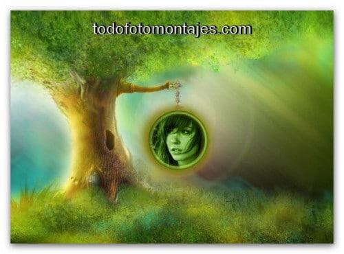 Fantas a fotomontajes gratis page 4 - El arbol encantado ...